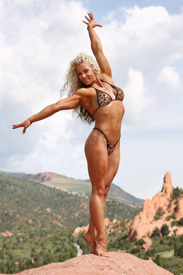 Bodybuilder femenino foto de archivo libre de regalías