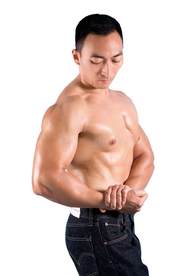 Bodybuilder fléchissant son muscle images libres de droits