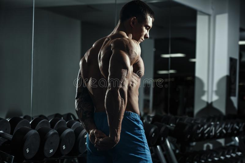Bodybuilder with great physique and body shape shows perfect muscular body in gym over dramatic light. Fit muscle guy workout concept photo royalty free stock image