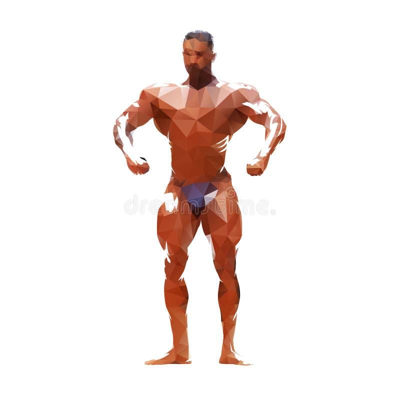 Bodybuilder het stellen, veelhoekige geïsoleerde vectorillustratie vector illustratie