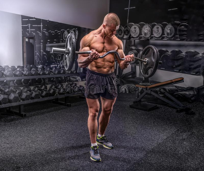 Bodybuilder lifting barbell stock photography