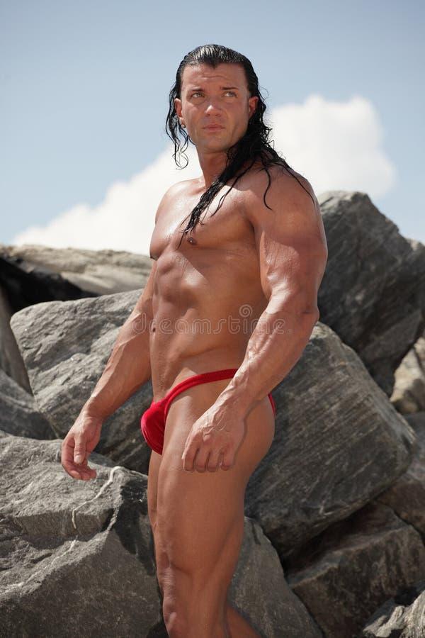 Download Bodybuilder Looking Over His Shoulder Stock Image - Image: 21395247