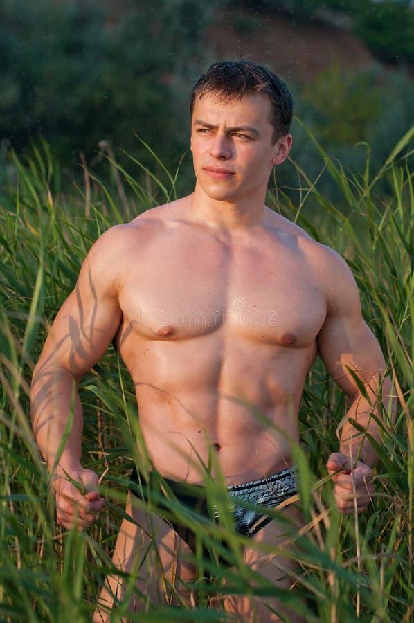 Bodybuilder mâle photographie stock libre de droits
