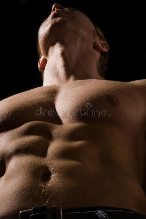 Bodybuilder mâle musculaire photographie stock