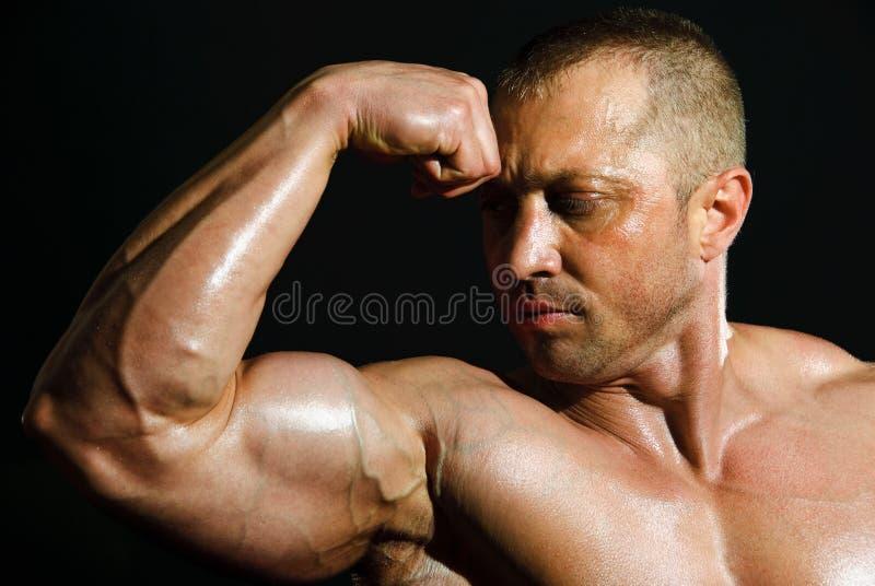bodybuilder mężczyzna obrazy royalty free