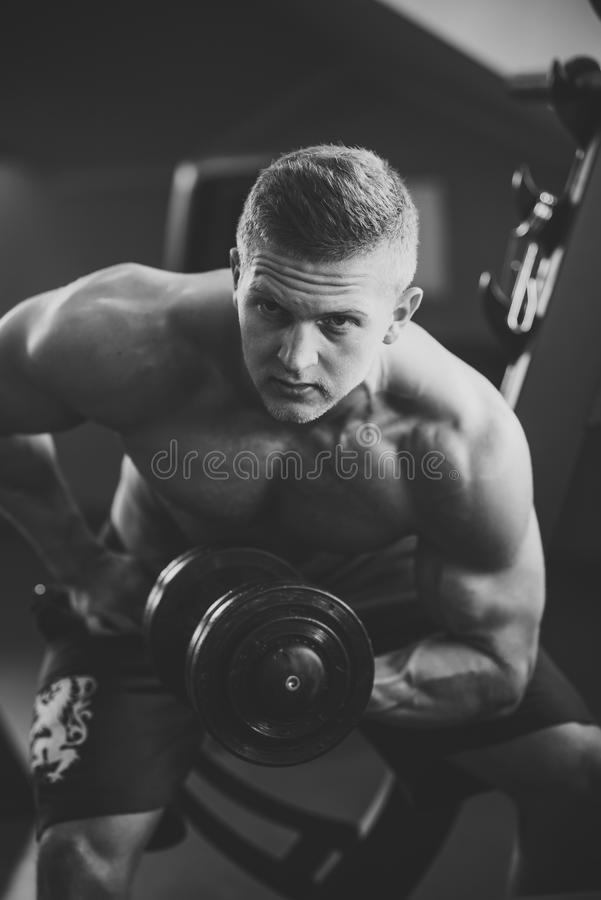 Bodybuilder man build hand muscles with dumbbell in gym stock photos