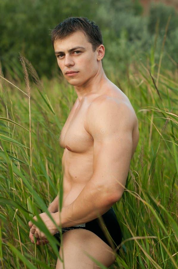 Bodybuilder maschio immagine stock libera da diritti