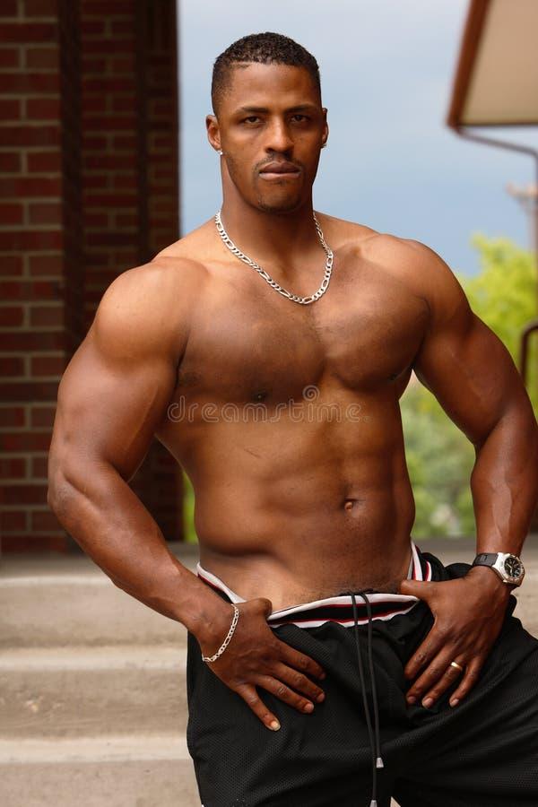 Bodybuilder masculino imagens de stock