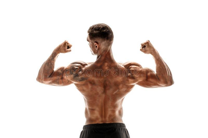 Bodybuilder montrant ses muscles de dos et de biceps d'isolement sur un fond blanc, entraîneur personnel de forme physique photographie stock libre de droits