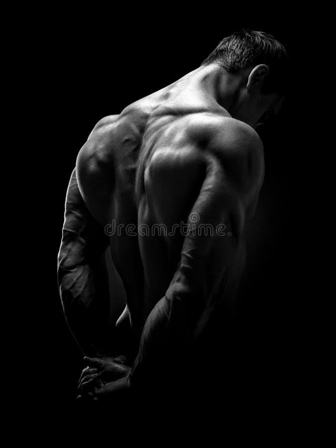 Bodybuilder musculaire beau tourné de retour images stock