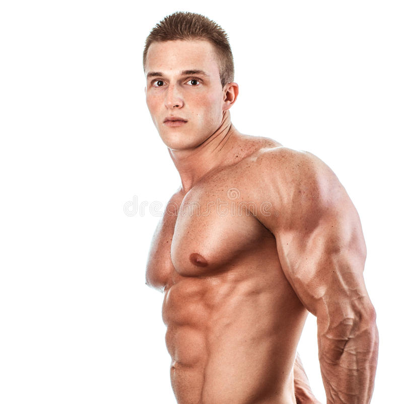 Bodybuilder. Muscular and torso and triceps of young man, bodybulider isolatedon white royalty free stock images
