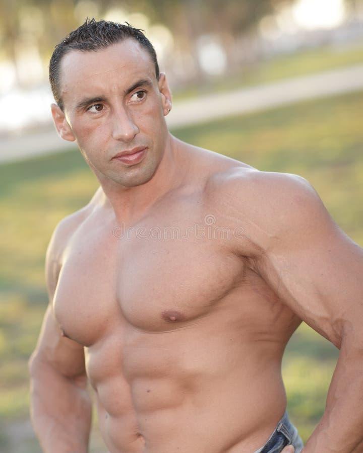 Bodybuilder no parque fotos de stock