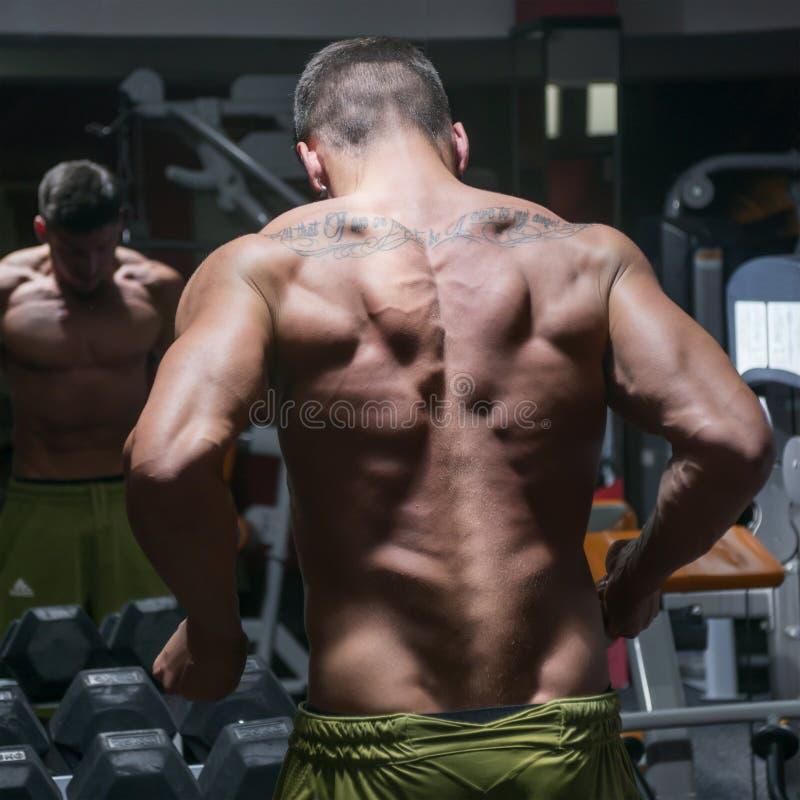 Bodybuilder od plecy zdjęcie royalty free