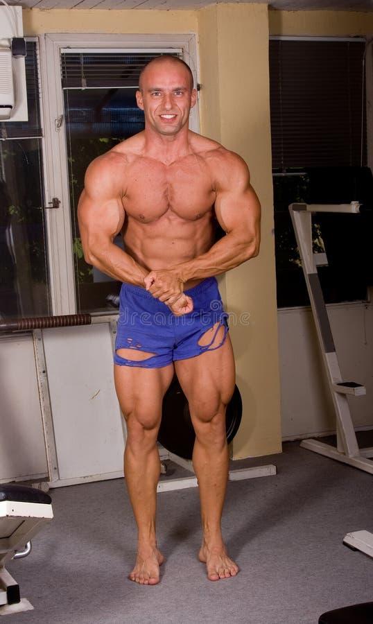Bodybuilder posing stock images
