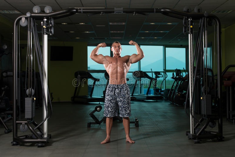 Bodybuilder Posing In The Gym. Bodybuilder Posing In Different Poses Demonstrating Their Muscles - Male Showing Muscles Straining - Beautiful Muscular Body stock image
