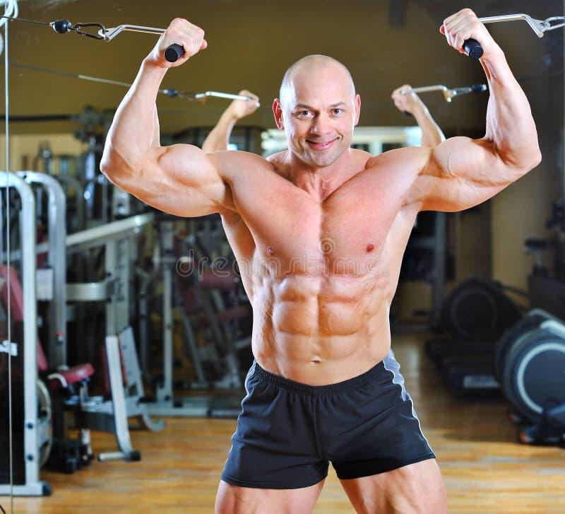 Bodybuilder que levanta na ginástica - torso do homem forte fotografia de stock