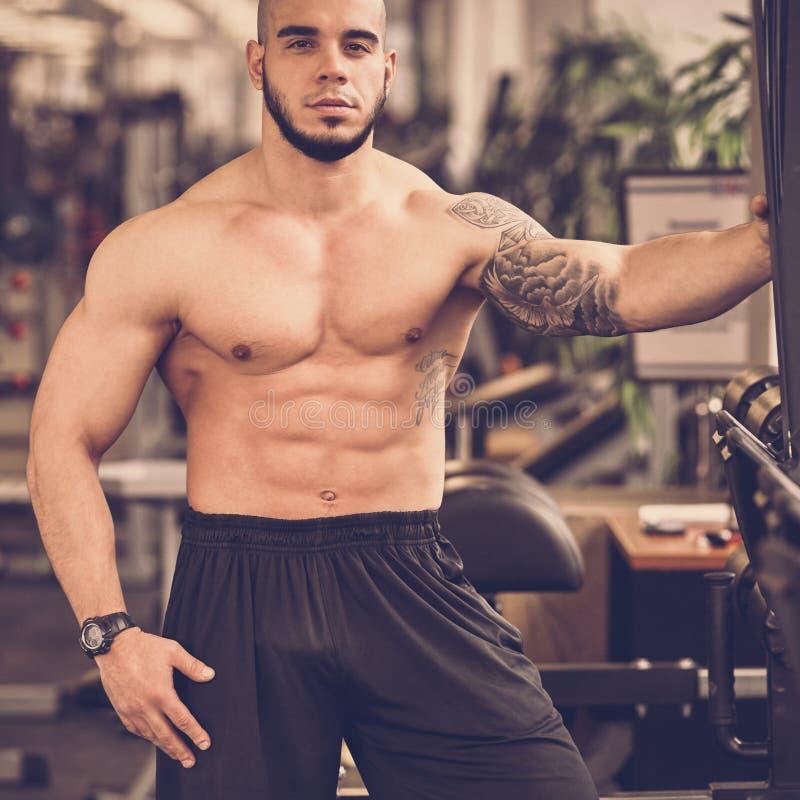 Bodybuilder que presenta en gimnasia foto de archivo