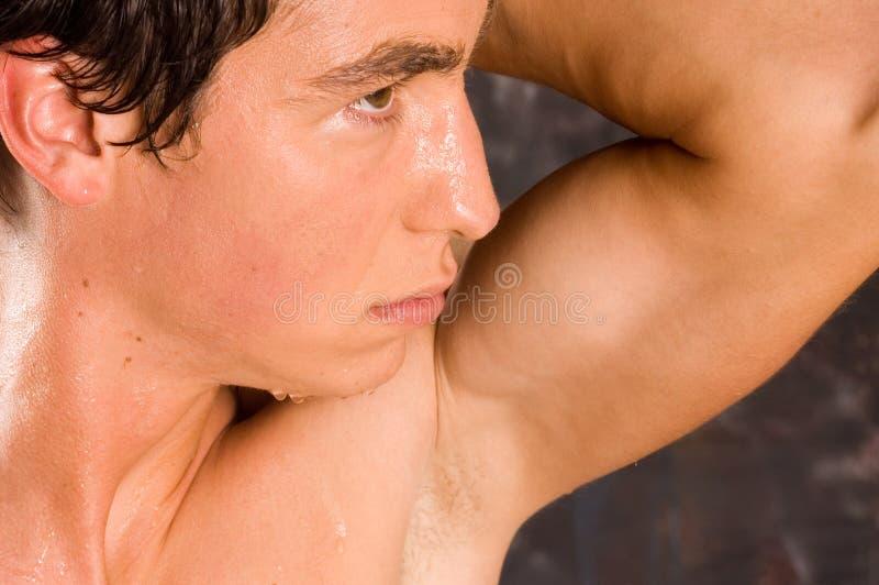 Bodybuilder suado molhado fotografia de stock royalty free