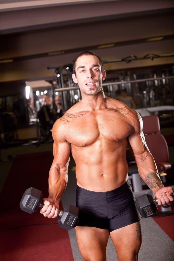 Bodybuilder szkolenie zdjęcia royalty free