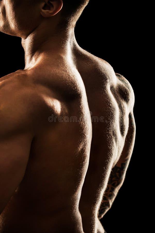 bodybuilder target313_0_ fotografia royalty free