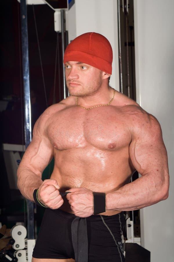 bodybuilder target542_0_ zdjęcie royalty free