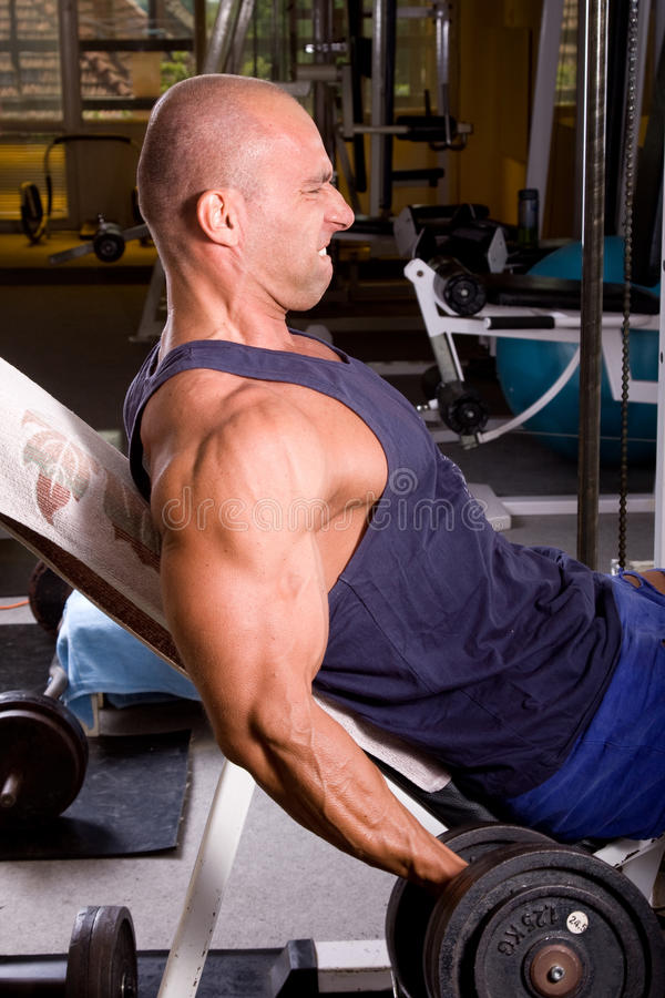 Bodybuilder training. His bicep in the gym stock photos