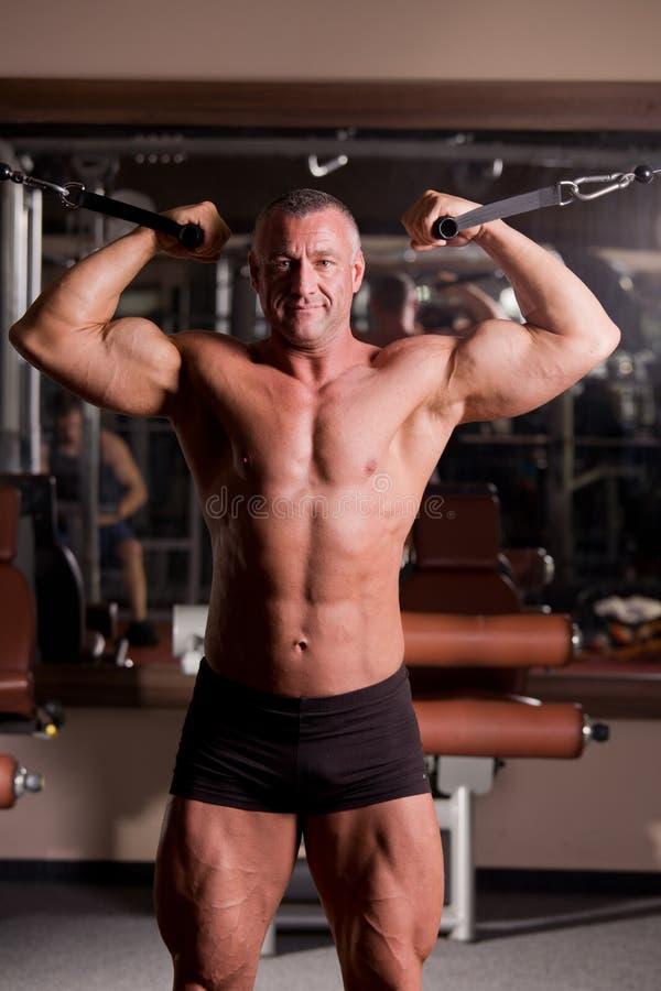 Download Bodybuilder training stock image. Image of enjoyment - 22305345