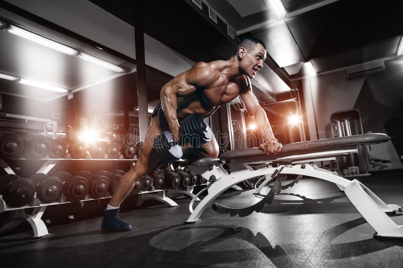 Bodybuilder training back with dumbbell in the gym. Athlete muscular bodybuilder training back with dumbbell on bench in the gym royalty free stock photo