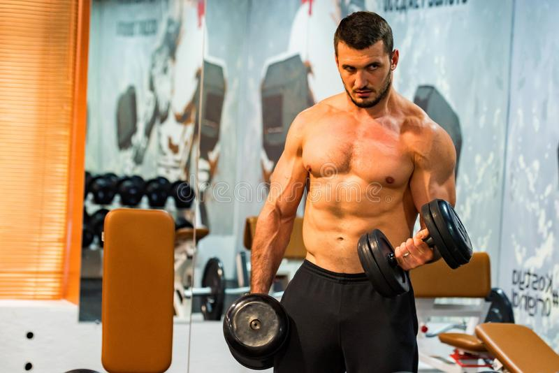 Male athlete doing biceps exercise with dumbbells stock photography