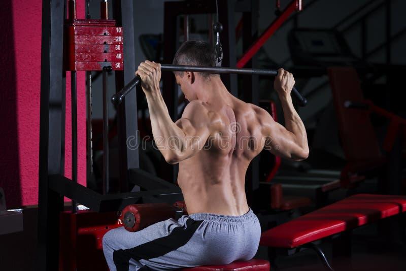 Bodybuilder trening na trenerze w gym, perfect mięśniowy męski ciało zdjęcie stock
