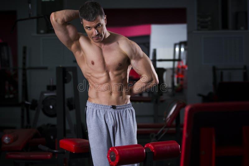 Bodybuilder trening w gym, perfect mięśniowy męski ciało fotografia royalty free