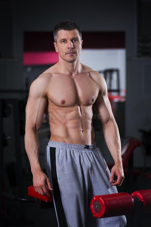 Bodybuilder trening w gym, perfect mięśniowy męski ciało fotografia stock