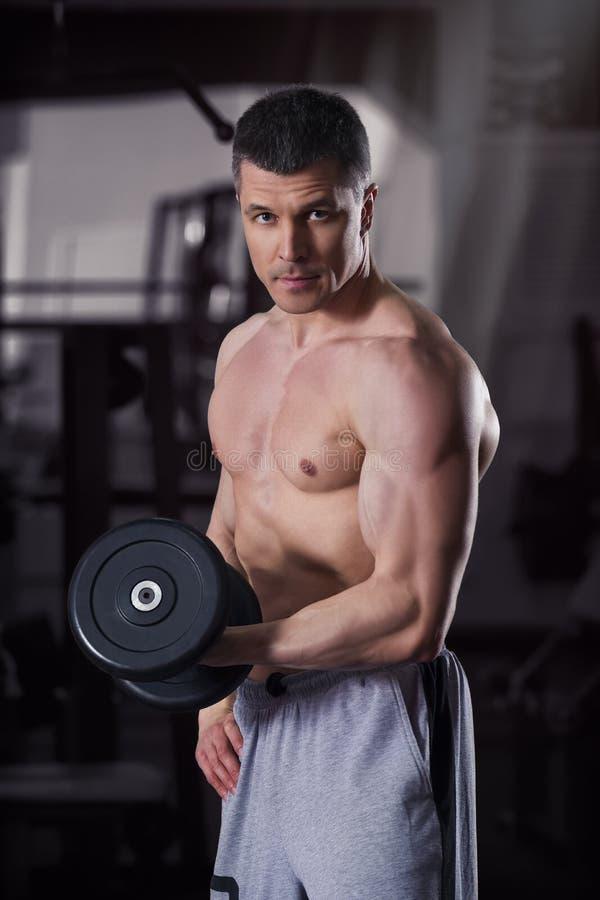Bodybuilder trening z dumbbells w gym, perfect mięśniowy męski ciało obrazy stock