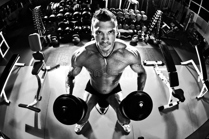 Bodybuilder w gym obraz stock