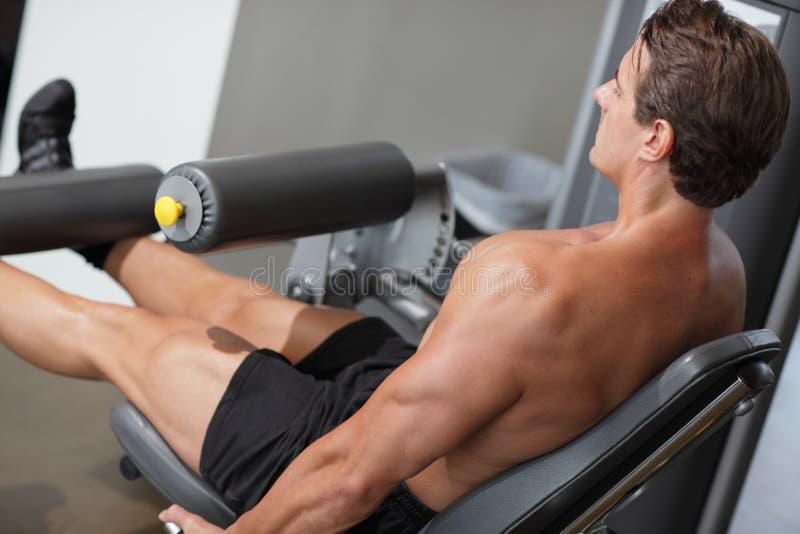 Bodybuilder w gym zdjęcie stock