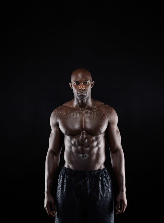 Bodybuilder z mięśniową budową ciała obrazy royalty free