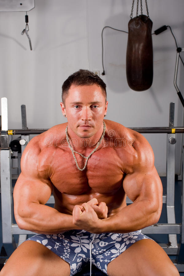Bodybuilderaufstellung stockfotos