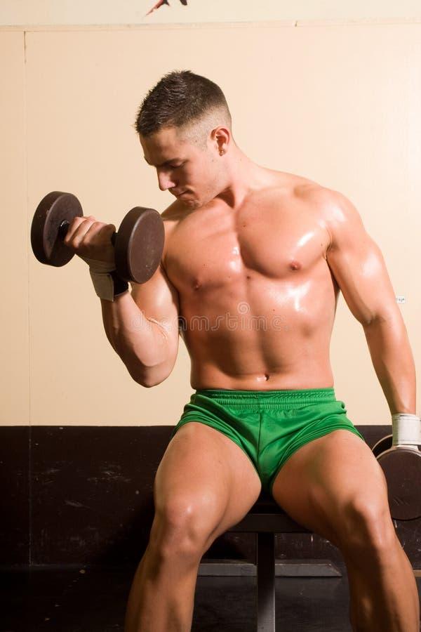 Bodybuilderausbildung lizenzfreie stockfotos