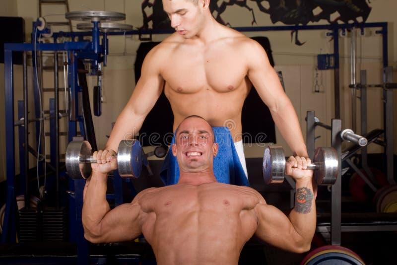 Bodybuilderausbildung lizenzfreie stockbilder