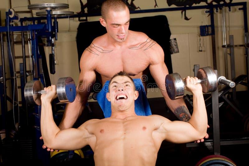Bodybuilderausbildung stockfoto