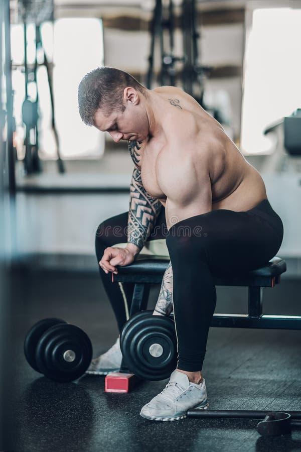 Bodybuilderkerl sitzt auf einer Bank und führt Übungen für seine Bizepse durch lizenzfreie stockfotos