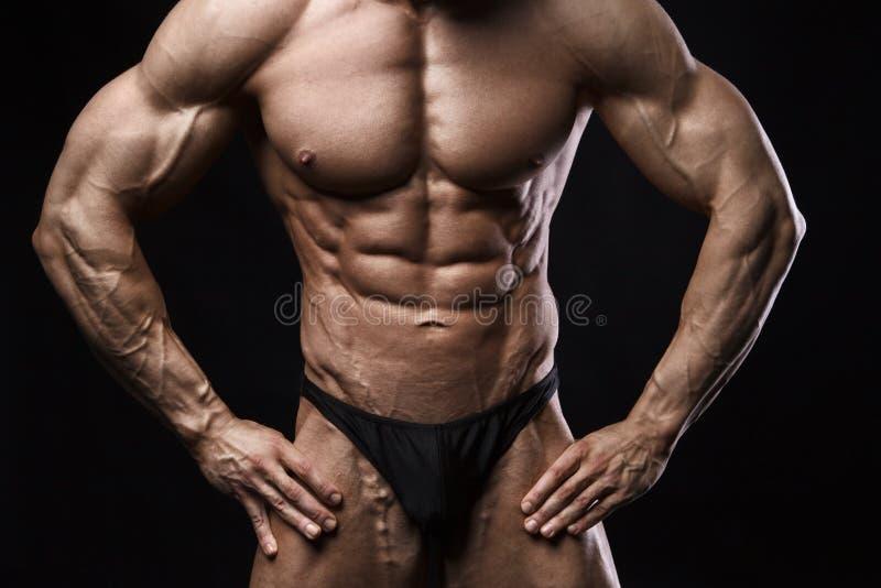 Bodybuildermann mit perfekter ABS, Schultern, Bizeps, Trizeps und Kasten stockfotos
