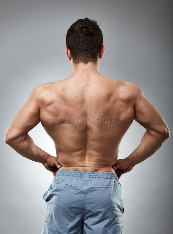 Bodybuildermodel terug op grijs stock foto's