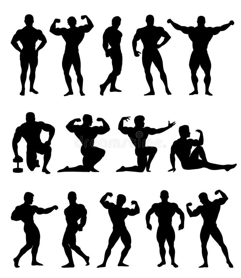 Bodybuilders διανυσματική απεικόνιση