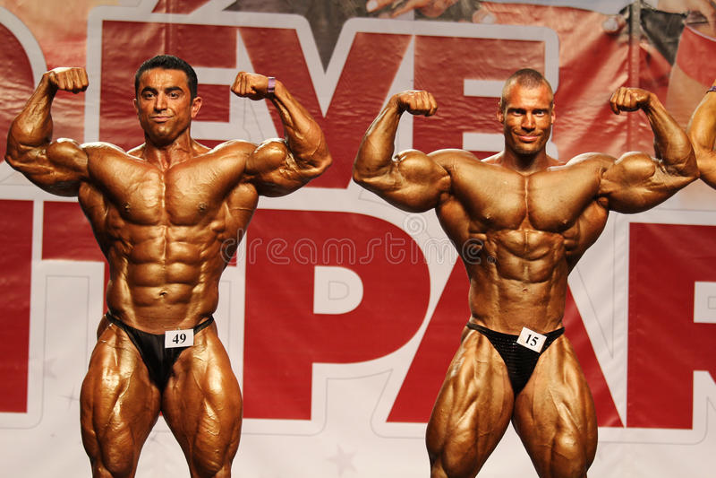 Bodybuilders fotografia royalty free