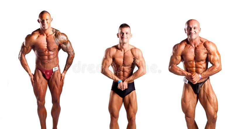 Bodybuilders pozować fotografia stock