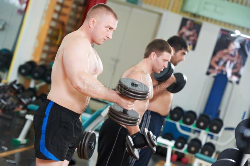 Bodybuilders que levantam o peso na ginástica do esporte imagem de stock royalty free