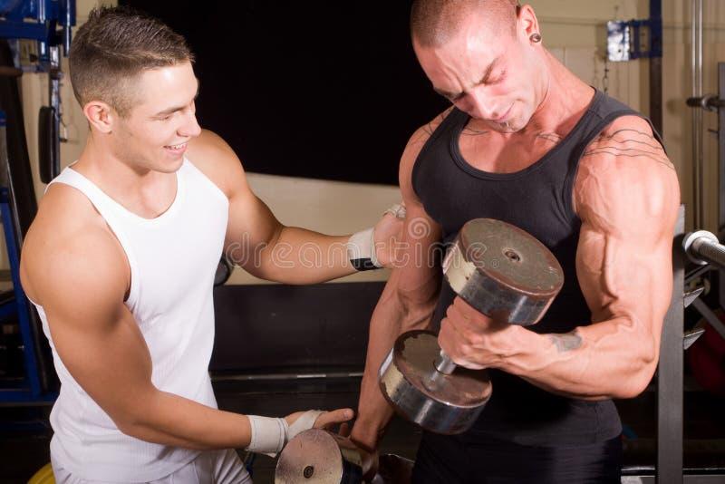 bodybuilders target1380_1_ zdjęcie stock