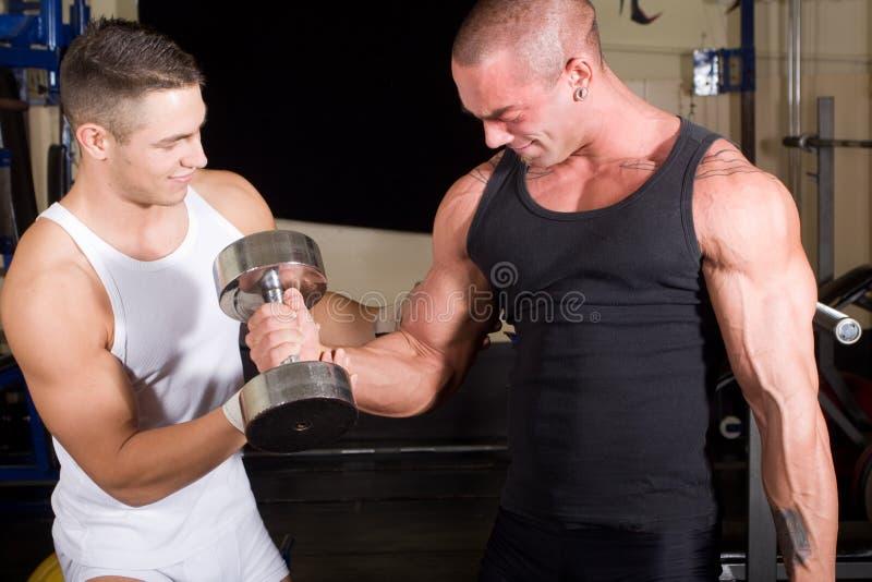 bodybuilders target710_1_ zdjęcie stock