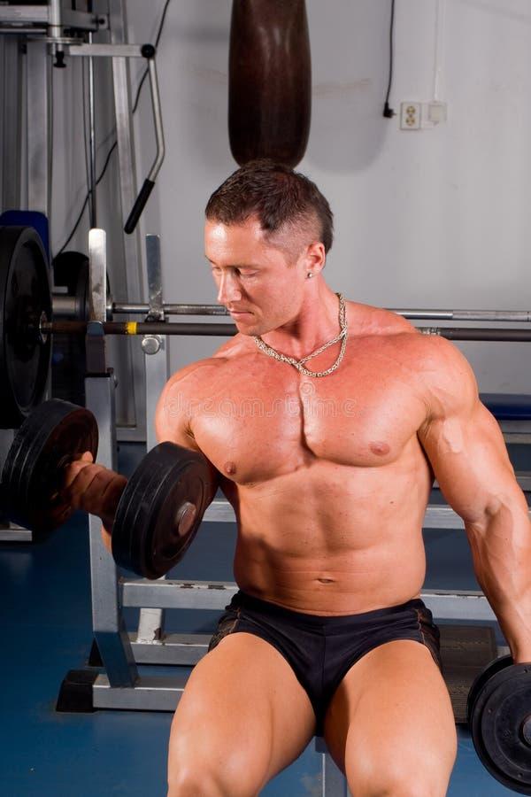Bodybuildertraining stockfotografie